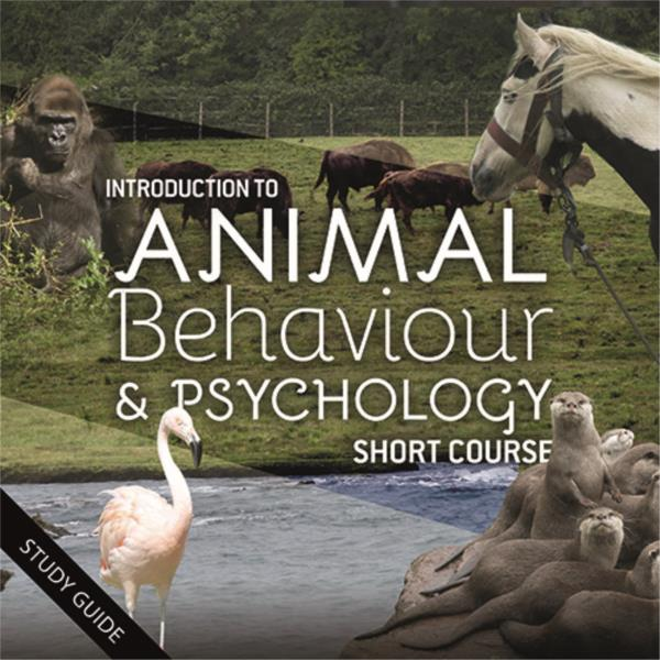 Animal Behaviour and Psychology- Short Course