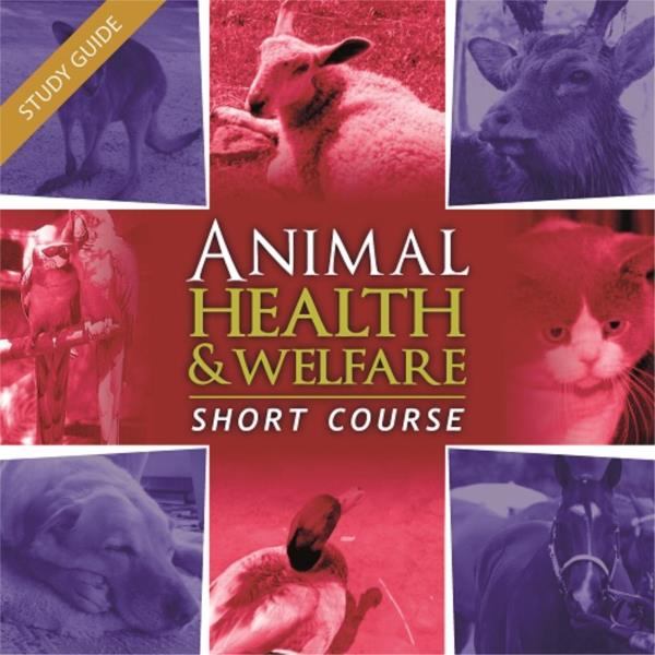 Animal Health and Welfare - Short Course