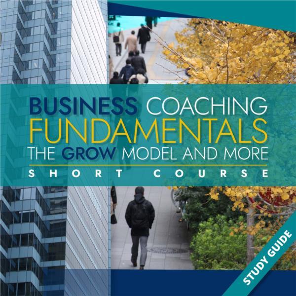 Business Coaching Fundamentals- Short Course