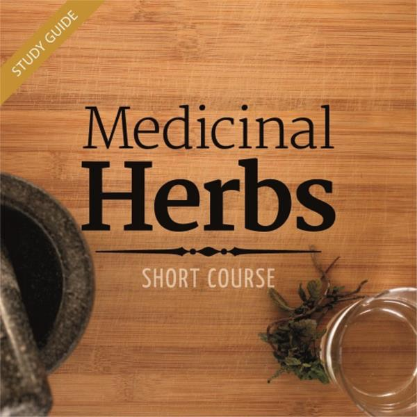 Growing and Using Medicinal Herbs Short Course