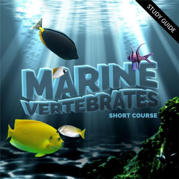 Marine Vertebrates- Short Course