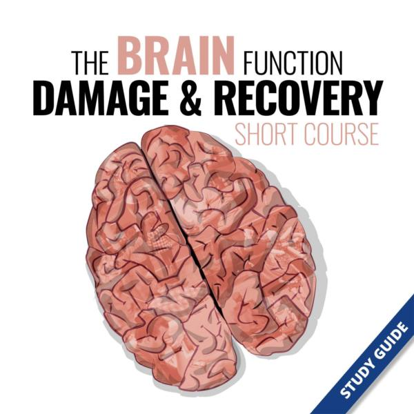 The Brain Function, Damage and Recovery- Short Course